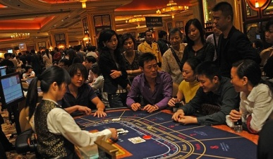 Chinese gamblers - China Elite Focus
